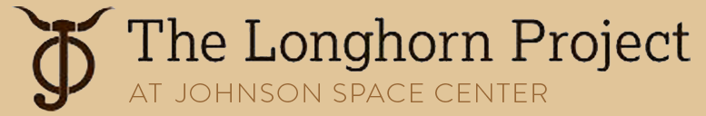 The Longhorn Project Logo